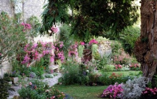Deset najčešćih grešaka pri uređenju vrta