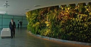 Vertikalni vrtovi